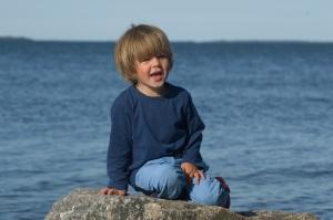 Love på en sten. Havssvalget i horisonten.